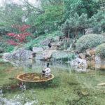 Il laghetto del giardino giapponese