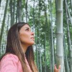 orto botanico di roma foresta di bambu